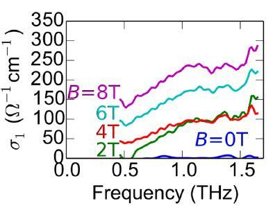 Quantum Mechanics Research Papers Pdf